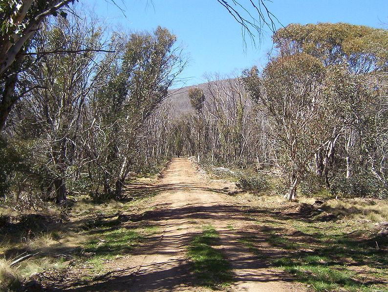 Namadgi National Park walking trail